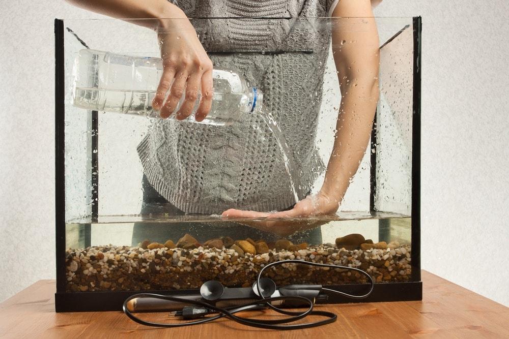 installer aquarium (2)