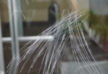 Astuce pour enlever les rayures sur les vitres d'un aquarium