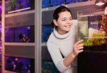 Comment et avec quoi nourrir les alevins poisson