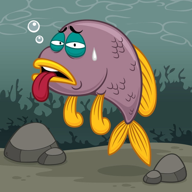 La prévention des maladies chez les poissons