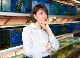 comment acheter son aquarium