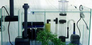 Les matériaux de filtration en aquarium